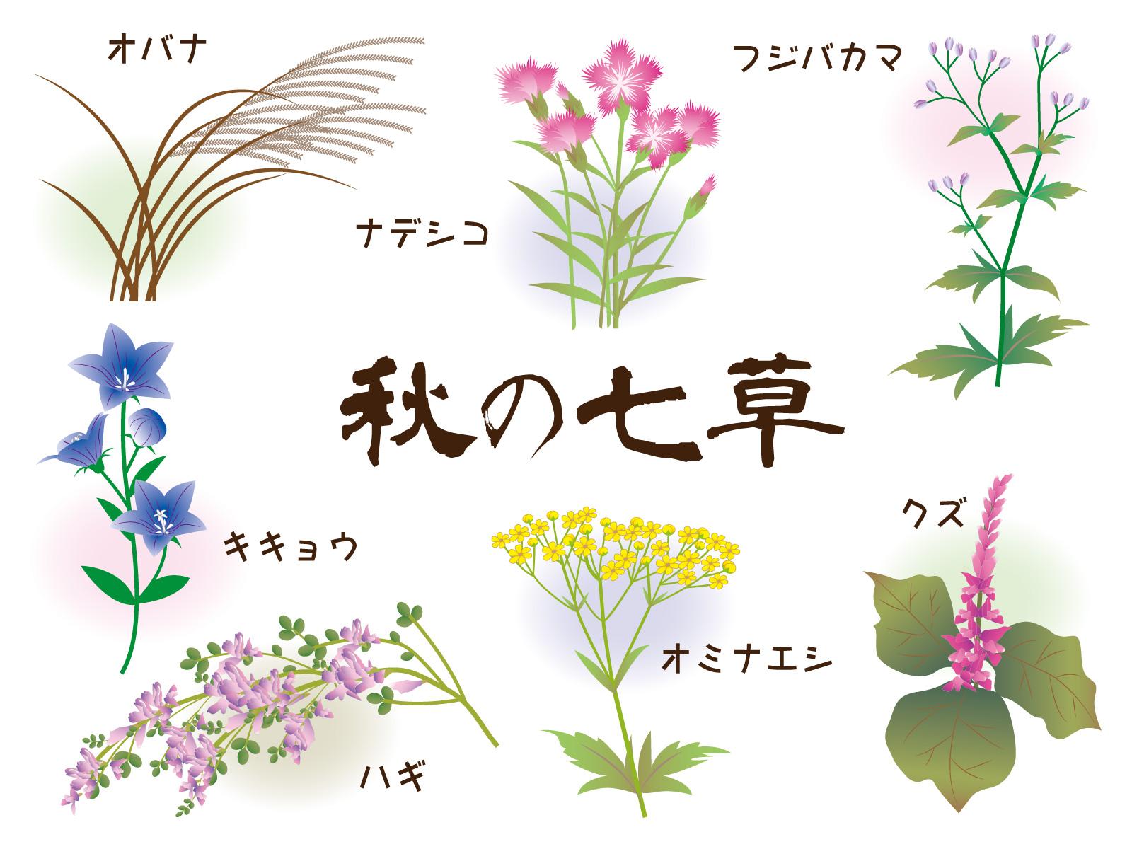 七草 方 の 秋 覚え